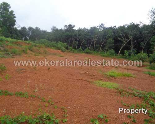 residential plots sale at Thachottukavu trivandrum kerala real estate