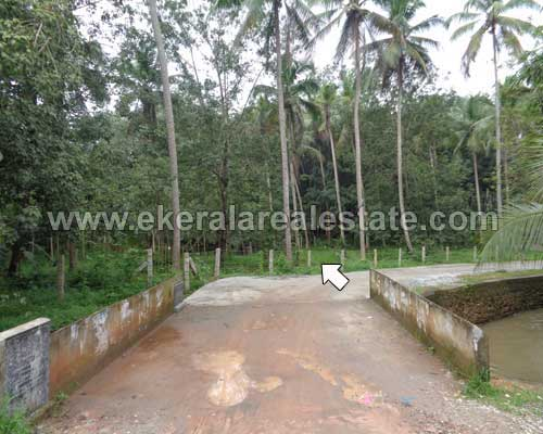 Kuttichal Kattakada rubber estate land plots sale trivandrum