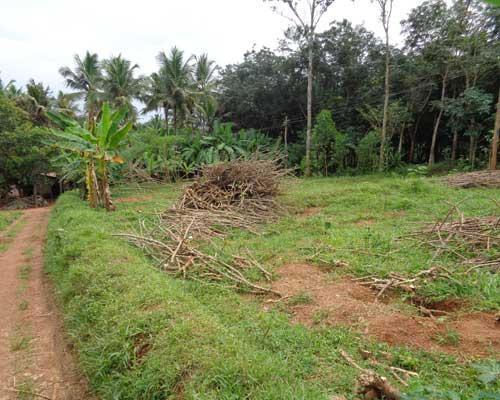 Thonnakkal thiruvananthapuram land plots sale kerala real estate house for sale in trivandrum - Houses for small plots of land ...
