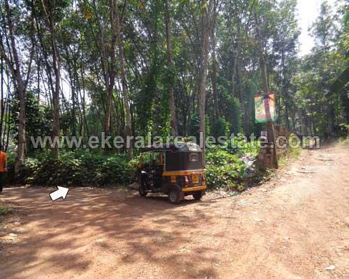 nedumangad valiamala residential house plots for sale kerala real estate