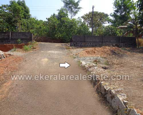 Kallambalam real estate kerala Kallambalam house land plots for sale