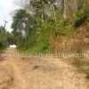 nedumangad real estate thiruvananthapuram nedumangad rubber estate for sale