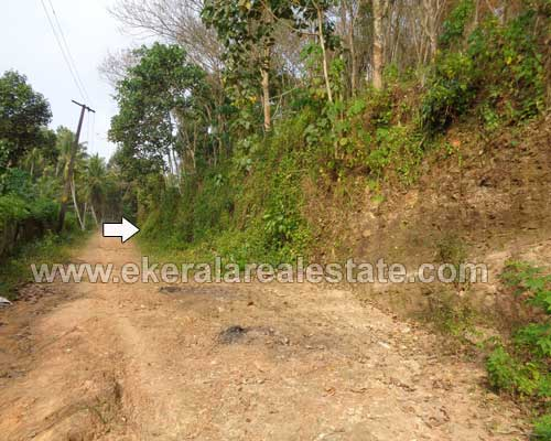 nedumangad real estate thiruvananthapuram nedumangad rubber estate for sale