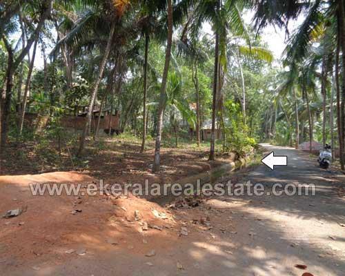 Neyyattinkara Kamukincode house plots for sale kerala real estate trivandrum