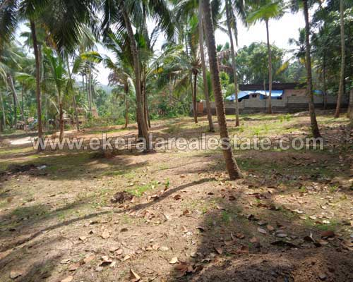 Vedivechankovil Balaramapuram house plots sale trivandrum real estate kerala