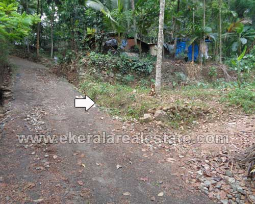 Kattakada real estate 32 Cents land for sale Kattakada properties