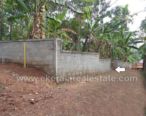 Pathamkallu Nedumangad real estate 13 Cents land for sale Pathamkallu Nedumangad properties