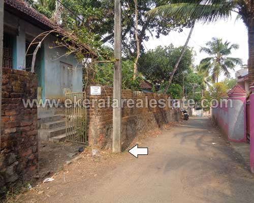 Thirumala real estate 7 Cents Residential Land for sale Thirumala properties