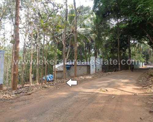 Malayinkeezhu real estate 95 Cents Residential Land for sale Malayinkeezhu properties