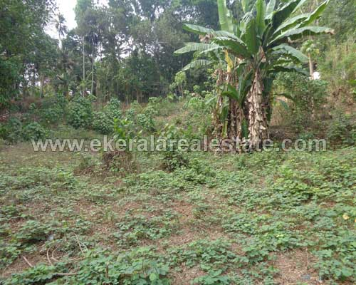 Vattappara trivandrum Tar Road 37 cent land plot for sale in kerala real estate