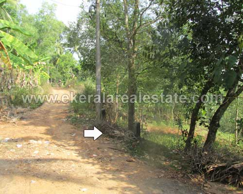 Balaramapuram trivandrum 1 acre land plots sale Balaramapuram real estate