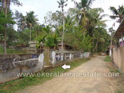 house plots sale in Mudavoorpara Balaramapuram trivandrum real estate properties