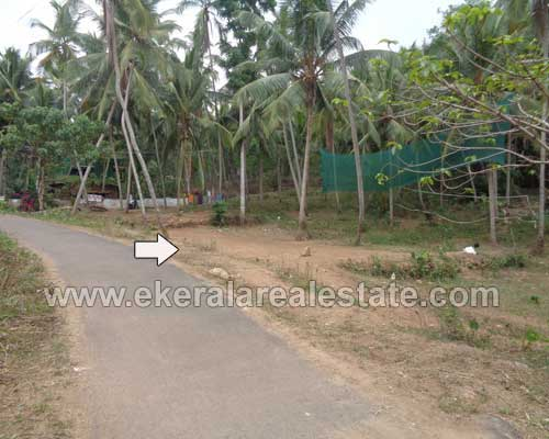 peyad real estate residential plots sale at peyad kollamkonam trivandrum