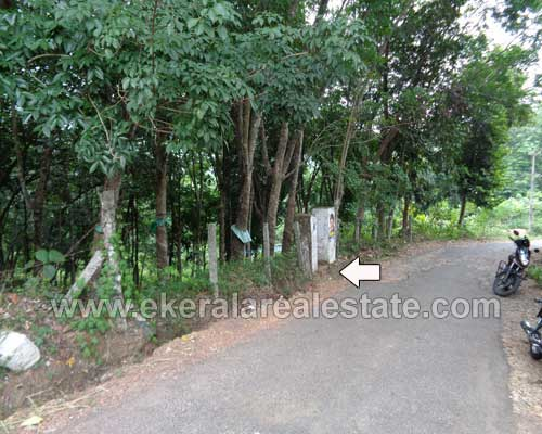 Property sale in Peyad trivandrum 75 cents land in Vilappilsala Peyad Kerala