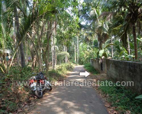 properties for sale in Vizhinjam land plots sale at Vizhinjam trivandrum