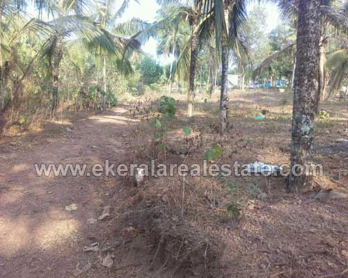 Kavalayoor Varkala Trivandrum East Facing land plots for sale at Varkala real estate