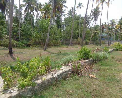 Trivandrum Kaniyapuram Residential land for sale at Kaniyapuram Properties