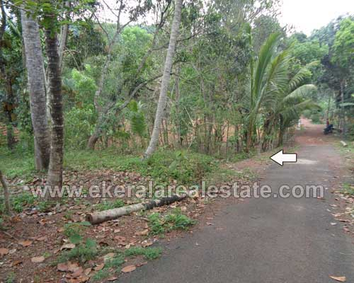 Trivandrum Korani near Attingal Residential old house with land for sale