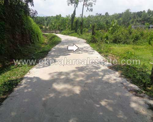 Land and plot for sale at Vithura Nedumangad Real estate Properties Trivandrum