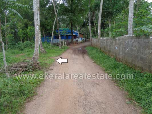 Kattakada veliyancode land and plot sale for Land for sale in kerala