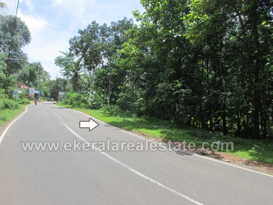 Trivandrum Nedumangad House Plots for sale Kerala real estate Trivandrum Properties