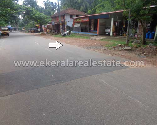 Properties in Vithura Trivandrum Land sale in Vithura near Nedumangad Trivandrum kerala