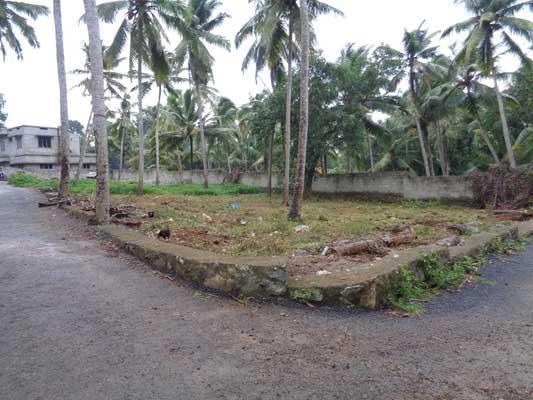Plots sale Aralumoodu near Balaramapuram Trivandrum Kerala Properties at Balaramapuram