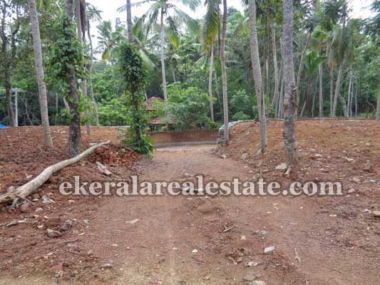Trivandrum Real Estae Balaramapuram 33 Cents Land for Sale at Avanakuzhi near Balaramapuram