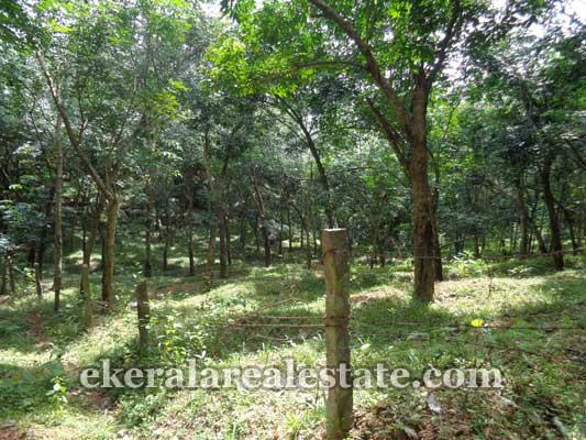 Neyyattinkara real estate properties Neyyattinkara Land sale