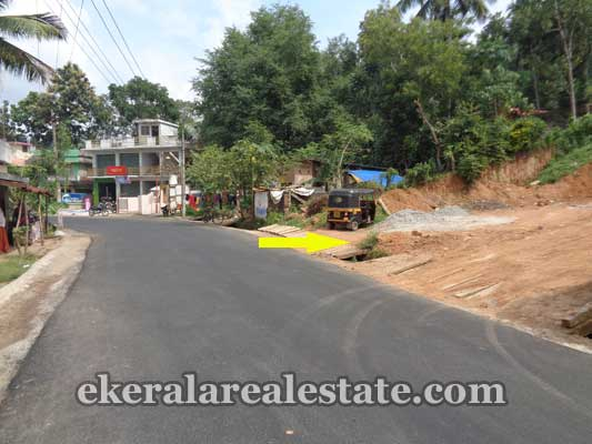 Trivandrum real estate Kerala Land plots in Thachottukavu peyad Trivandrum