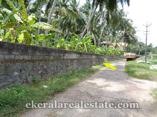 Trivandrum real estate Kerala Land and plot in Balaramapuram Trivandrum