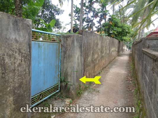 Peyad Properties Land plot for sale at Vilappilsala near Peyad Trivandrum Kerala