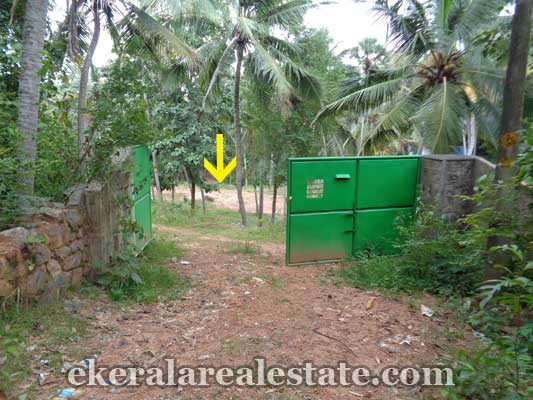 Vellayani Properties Land plot for sale at Vellayani Trivandrum Kerala