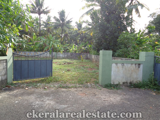 trivandrum real estate properties Choozhampala Ambalamukku land for sale Ambalamukku properties