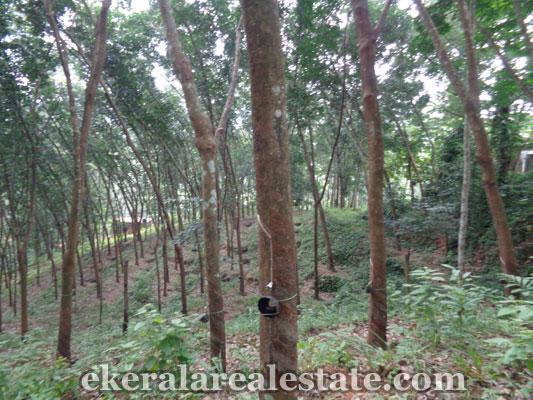 land in trivandrum land sale at Vithura trivandrum kerala real estate properties