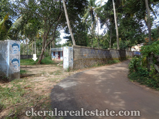 trivandrum-properties-land-plots-sale-at-peringamala-trivandrum-kerala-real-estate