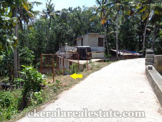 trivandrum-properties-land-plots-sale-at-neyyattinkara-manchavilakom-trivandrum-kerala-real-estate