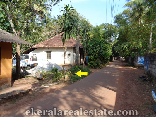 trivandrum-properties-land-plots-sale-at-chenkottukonam-sreekaryam-trivandrum-kerala-real-estate