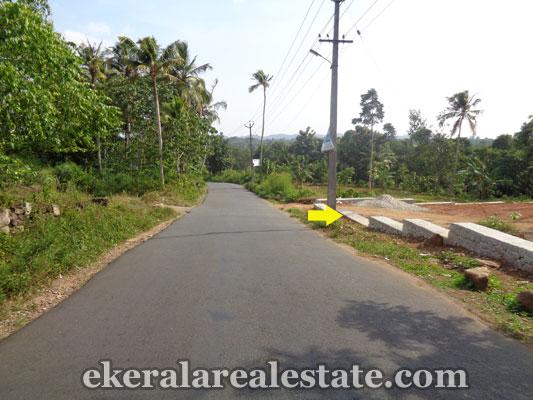 trivandrum-properties-land-plots-sale-at-venjaramoodu-trivandrum-kerala-real-estate