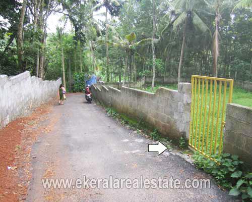 trivandrum-properties-land-plots-sale-at-njandoorkonam-sreekaryam-trivandrum-kerala-real-estate