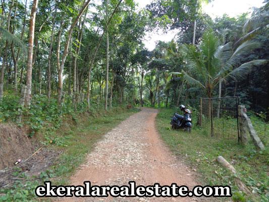 trivandrum-properties-house-plot-sale-at-kandala-kattakada-trivandrum-kerala-real-estate