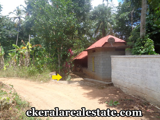 residential-land-at-kilimanoor-trivandrum-kerala-real-estate-properties