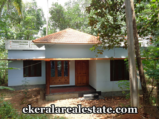 residential-land-at-mundela-near-nedumangad-trivandrum-kerala-real-estate-properties