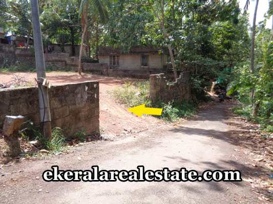 land-brokers-agents-in-pravachambalam-trivandrum-pravachambalam-real-estate