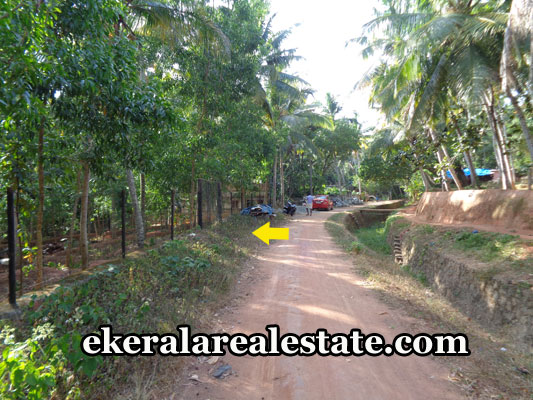 land-brokers-agents-in-vizhinjam-trivandrum-vizhinjam-real-estate-properties