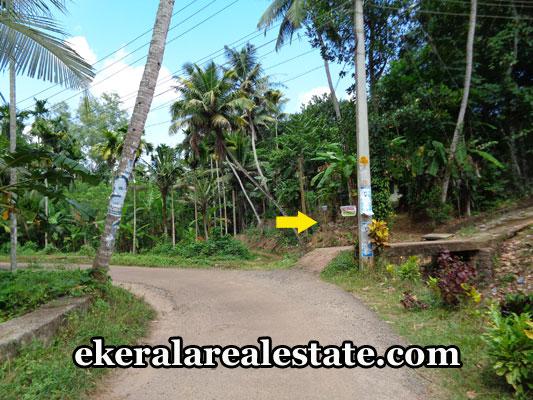 land-plots-sale-in-nedumangad-thiruvananthapuram-kerala-real-estate