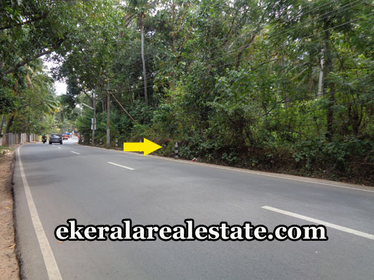 vizhinjam-properties-land-plots-sale-in-mulloor-vizhinjam-thiruvananthapuram-kerala-real-estate