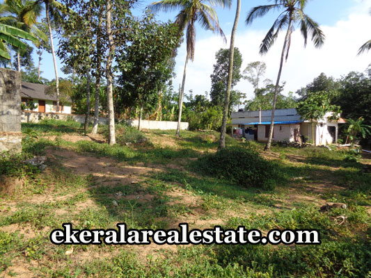 properties-in-trivandrum-land-sale-in-nedumangad-trivandrum-real-estate-kerala