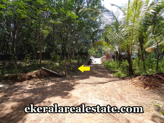properties-in-trivandrum-34-cents-land-sale-in-puliyarakonam-trivandrum-real-estate-kerala