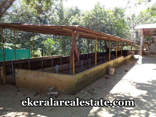 kerala-real-estate-trivandrum-venjaramoodu-land-for-sale-venjaramoodu-properties